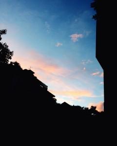 Alessandra_Tavecchia_1A