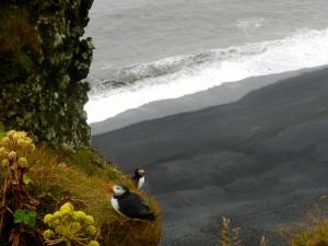 Rapetti_Arianna_5I_Agosto2012_Islanda